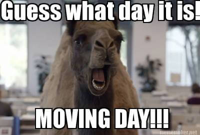 Image result for moving in meme